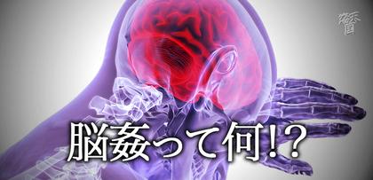 gesubaka_382_nokan.jpg