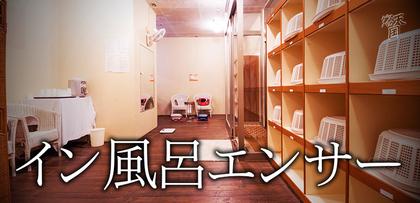 gesubaka_340_infuroensa.jpg