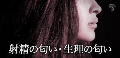 gesubaka_387_syaseiseiri.jpg